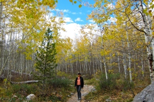 Michael has been searching for the perfect aspens.